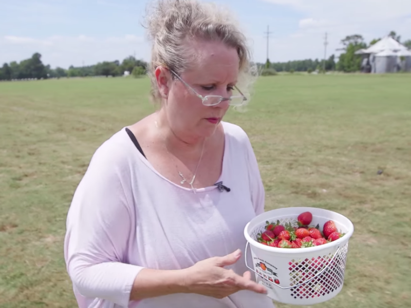 This is How Fresh Jam is Made – Staples, Ep. 26